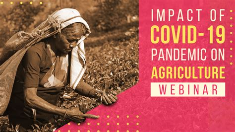 Way-Forward: COVID-19 and Indian Agriculture | NewsClick
