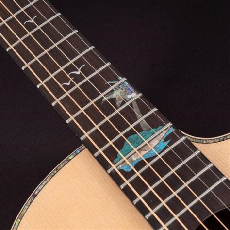 Rockin' Instruments A Glossary Guide To Types of Guitar