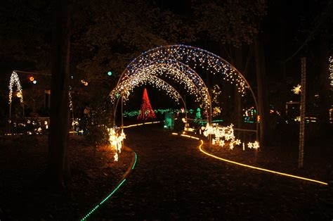 Christmas lights in Tallahassee | Visions of Travel