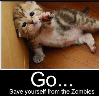 The Invasion Of the Zombie Cats Story | Super Meow Meow
